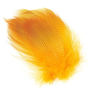 Mallard Barred Feathers Orange