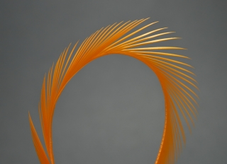 Husí Biots Goose Biot Strips Orange
