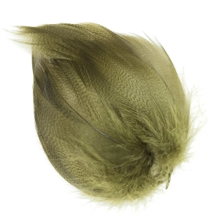 Mallard Barred Feathers Olive