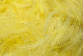 CDC peří Big Packs Top Grade Mayfly Yellow